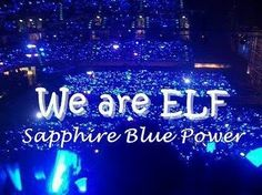 "we are ELF ""sapphire blue"""