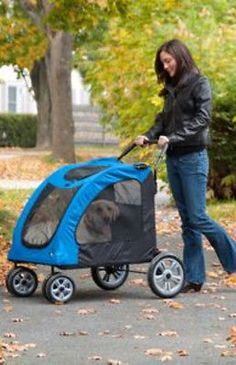 I SO need this......Pet Gear Dog Stroller Expedition Pet Stroller Blue up to 150 lbs PG8800SB