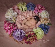 colours, hydrangea, baby, newborn, csutafoto, girl,