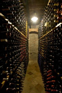 Wine bottles are jealously guarded in the wine cellar