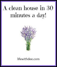 How to keep your house clean in 30 minutes a day
