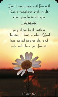 Life Quotes Love, Quotes About God, Attitude Quotes, Bible Verses Quotes, Bible Scriptures, Forgiveness Scriptures, Lyric Quotes, Movie Quotes, Quotes Quotes