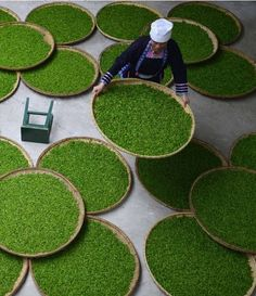 """ Dong woman in a tea factory Guizhou Province """