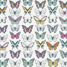 This butterfly background uploaded by We R Memory Keepers is gorgeous!