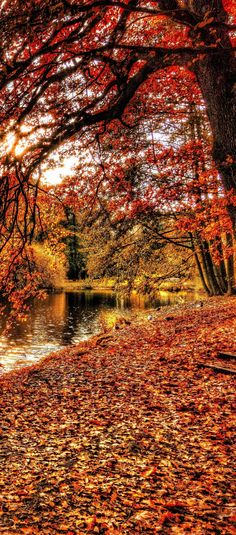 Best U.S. Cities for Fall Camping!
