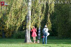 Photo shoot with dog. Pembroke Welsh Corgi, Corgi Dog, Moscow Russia, Dog Photos, Photo Shoot, October, Photo And Video, Lady, Dogs