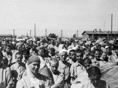 Women prisoners inside at death camp at Birkenau 1944