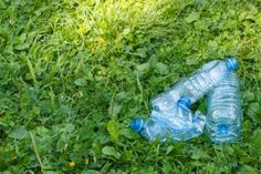 Nestlé and Coca-Cola Attempt to Block National Parks From Banning Bottled Water Sales | Alternet