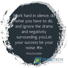 Let your success be your noise! www.pmsltech.com