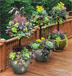 Very beautiful baskets and planters