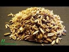 Fennel Seeds to Improve Athletic Performance | NutritionFacts.org Against prolonged use in vulnerable groups, children under 12, pregnant and breastfeeding women
