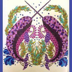 Adultcoloringbook Adultcoloring Adultcolouring Adultcolouringbook Milliemarotta Curiouscreatures Colouring Coloring Colouringbook Coloringbook