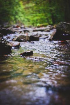 Creek Hike
