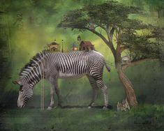 Animals, Animaux, Animal, Animales, Animais