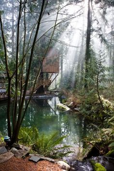 treehouse / A Gathering For Kindred Souls Looking To Live Off The Grid / The Green Life <3
