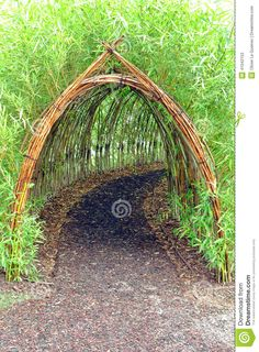 Whimsical and magic live bamboo plant covered tunnel as secret hidden mystery pathway in an urban children amusement playground and play park and natural discovery garden. Description from dreamstime.com. I searched for this on bing.com/images