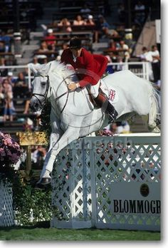 John Whitaker and Milton - I was obsessed when these two when I was a young rider...