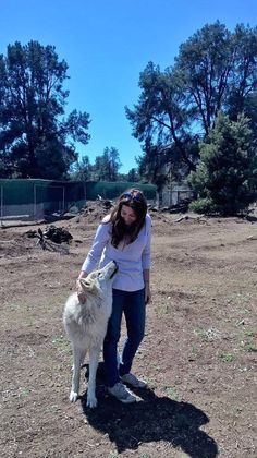 Such an amazing experience having a wolf gazing up at me. ❤️🐺 Leeloo Lockwood Animal Rescue Center (Lockwood ARC / LARC) — at Lockwood Animal Rescue Center.