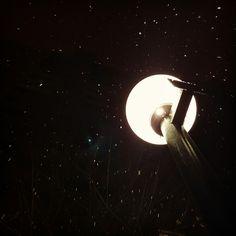 눈오는 걸 찍었는데 .. 별들이 쏟아지네