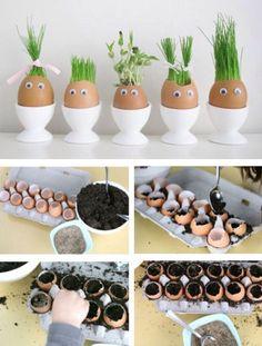 Tuinkruiden verwerkt in eierschillen.