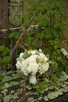 gorgeous white wedding bouquet with succulents and billy balls  ~  we ❤ this! moncheribridals.com