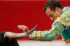 Spanish bullfighter 'Rafaelillo' performs with a Miura's ranch fighting bull during a bullfight of the San Fermin festival, in Pamplona, Spain, July 14.