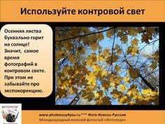 Снимаем осень