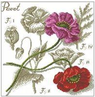 Высокое качество счетный крест комплекты тени цветок мака красивая горячая распродажа