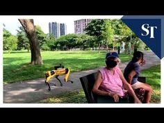 Singapore's Bishan-Ang Mo Kio Park is using Boston Dynamics' Spot robot to remind parkgoers about social distancing. If the two-week trial goes well, Spot co. Boston Dynamics, The Week Magazine, Deep Learning, Financial News, Cool Tech, Nature Reserve, Political Cartoons, Us Navy, Parks