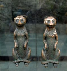 "Meerkat Door Handles by SuddenJim  ""door handles going into a store at the Houston Zoo, Houston, Texas, USA. Was just passing by and love the concept."""