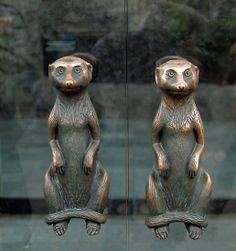Meerkat Door Handles by SuddenJim  door handles going into a store at the Houston Zoo, Houston, Texas, USA.