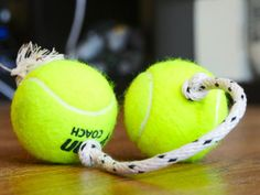 5 DIY DOG TOYS-Forget buying overpriced dog toys. Your pups are just going to destroy them anyway.