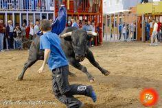 torodigital: Xilxes da por concluidas sus fiestas de San Vicen...