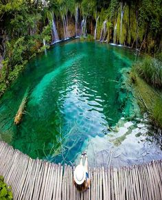 Plitvice Lakes National Park #Croatia - Tag who you'd like to chill here with #grandcamping #adventure #campsite #camping #survival #survivaltips #campsite #backpacking #adventure #campfire #tracknation #campingtrip #survivalkit #hikingtrail #hikingadventures #hiking #wanderlust #globetrotters #camper #outdoors #wildernessculture #gooutside #like #follow #photooftheday #picoftheday #campvibes #hiking #campsite