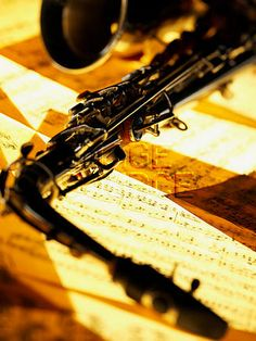 The beauty of the alto Sax....oh how I miss my old one