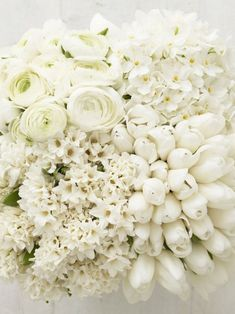 Gorgeous white flowers