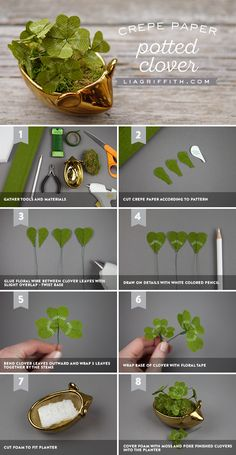 DIY Potted Crepe Paper Clovers – How to make Crepe Paper Crafts, Crepe Paper Flowers, Diy Paper, Fabric Flowers, Flower Paper, Paper Crafting, Faux Flowers, Diy Flowers, Origami Flowers