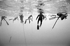These amazing series of black and white underwater photographs by world traveler and photographer Kanoa Zimmerman are breathtakingly beautiful. Fishing Photography, Underwater Photography, Art Photography, Inspiring Photography, Meditation Art, Scuba Diving, Surfing, Ocean, Zimmerman