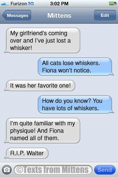NEW #textsfrommittens : The Whiskers Edition textsfrommittens.com
