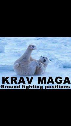 Krav Maga Groundfighting #omegakravmaga #kravlife #kravmaga