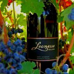 Leonesse winery TEMECULA ca