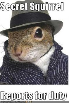 Secret Squirrel  Reports for duty
