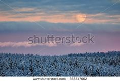Stock Photo: Snowy Landscape in the winter. Partly cloudy sky and the Moon shining behind the clouds.