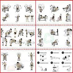 Full Week Workout Plan