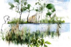 See the Cloudy Bay Garden at RHS Chelsea Flower Show 2016 Exhibitor Search / RHS Gardening