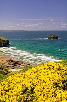 View from the Coastal Path of Trebarwith Strand and Gull Rock, Near Tintagel, North Cornwall, England