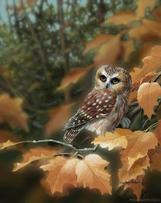 A wise old owl sat on an oak, The more he saw the less he spoke, The less he spoke the more he heard. Why can't we all be like that wise old bird?