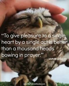 To give pleasure to a single heart by a single act is better than a thousand heads bowing in prayer...Gandhi