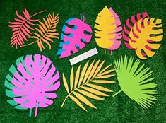 Extra large tropical paper leaves palms 12 pack   Etsy Hawaiian Party Decorations, Safari Decorations, Birthday Decorations, Paper Leaves, Paper Flowers, Hawaiian Theme, Hawaiian Parties, Hawaiian Luau, Moana Themed Party