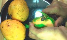बाजार जैसी फ्रूटी जूस घर पे कैसे बनाये? How to make fruity Juice at home in Hindi?[Step by step Photo] Badam Milk Recipe, Bhel Recipe, Lassi Recipes, Gujarati Recipes, Food Names, Juice, Mango, Food And Drink, Homemade
